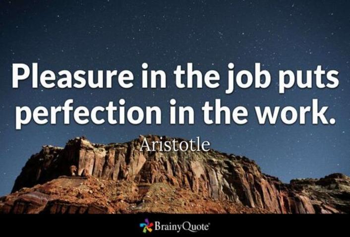 Pleasure in Job