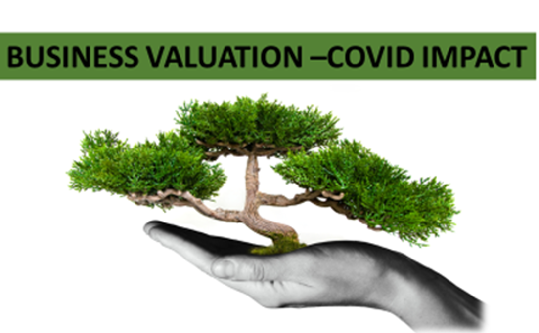 COVID-19 IMPACT- Why and How to Do Business Valuation