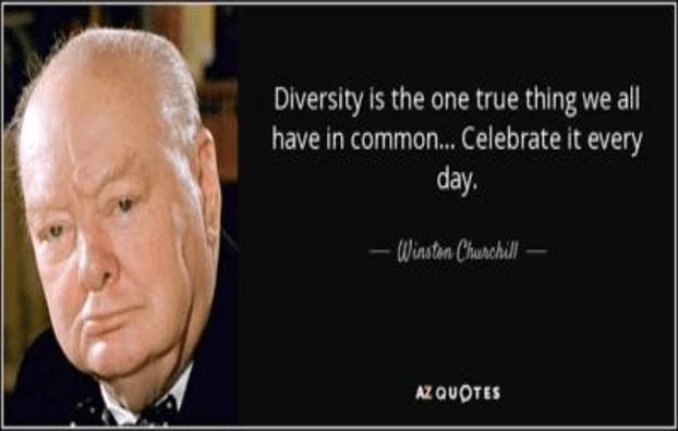 We Need Diversity